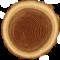Heartwood_tree_calgary